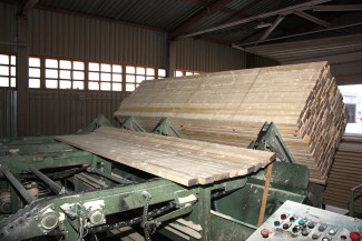 Timber crosscutting